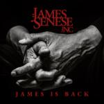 james is bakc copertina dell album disco di james senese